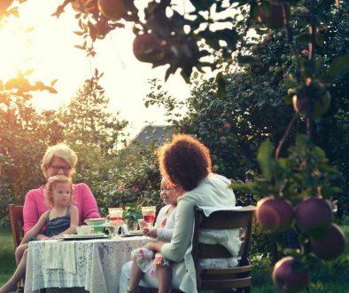 Help-seniors-navigate-mealtime-smpltec