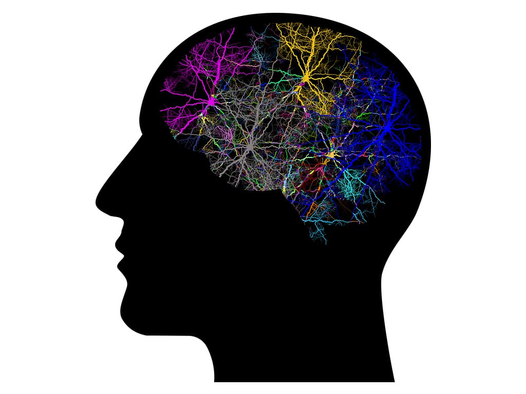 Parkinson-symtom-smpl