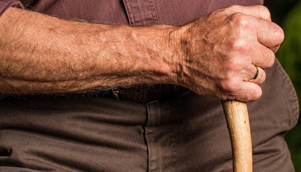 Model-to-Understand-Parkinson's-Disease-smpltec.