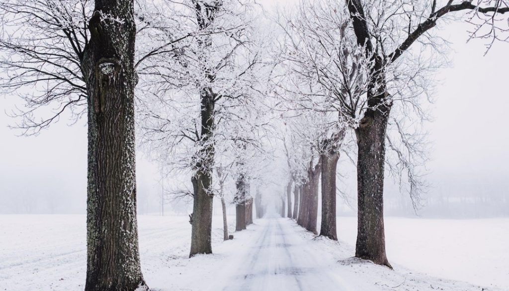 Making Sure Your Home is Safe During Winter Lockdowns smpltec