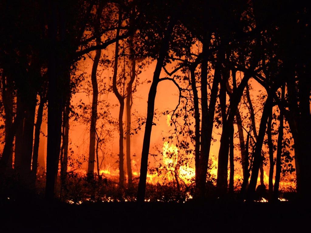 Start Preparing for Fire Season in North America smpltec